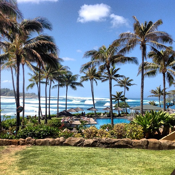 A change of pace presented itself at the Turtle Bay Resort. My first year round tan is here.